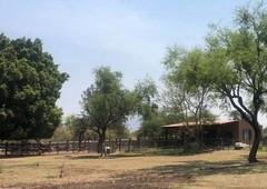 hermoso rancho especial para siembra de alfalfa