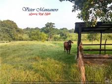 16 has. rancho ganadero en venta carretera villahermosa-macuspana