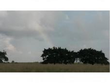 venta - rancho el marino 82ha campo alto balancan
