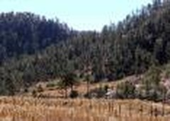 rancho en venta en san juanito, chihuahua