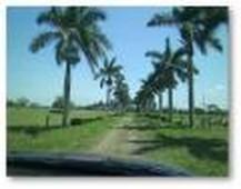 rancho en venta en tampamachoco tamiahua, veracruz
