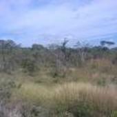 rancho en venta en vicente guerrero ocozocoautla de espinosa, chiapas